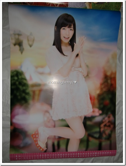 Watanabe Mayu 2014 Wall Calendar (4)