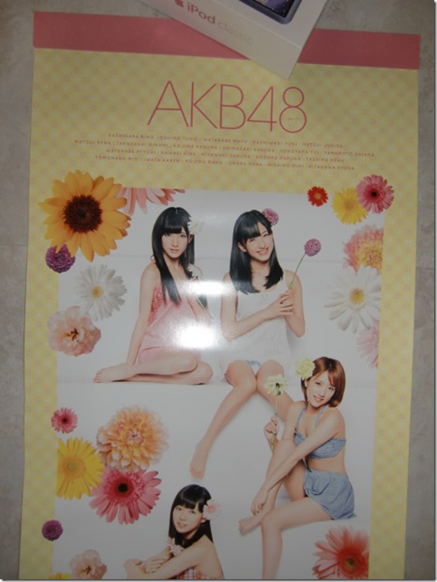 AKB48 2014 Official Calendar (14)