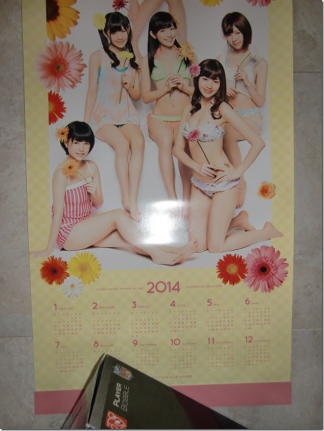 AKB48 2014 Official Calendar (18)