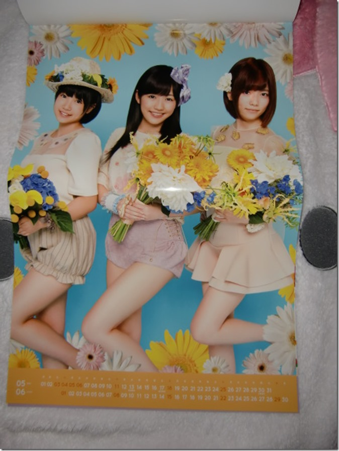 AKB48 2014 Official Calendar (8)