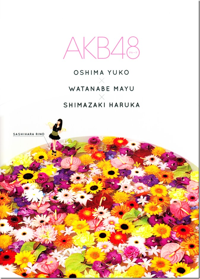 AKB48 2014 Official Calendar Box (3)