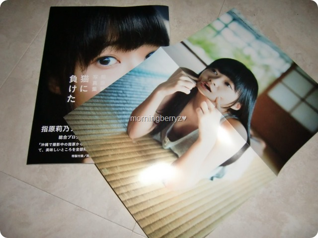 Sashihara Rino first shashinshuu Neko ni maketa with two sided poster