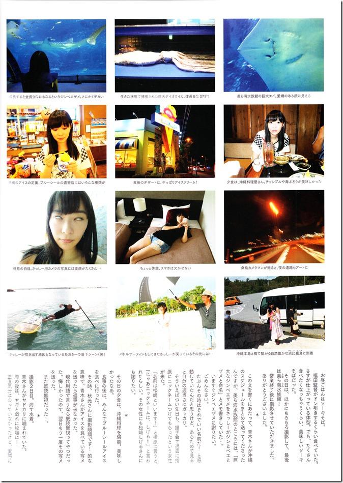 Sashihara Rino First Shashinshuu Neko ni maketa (142)