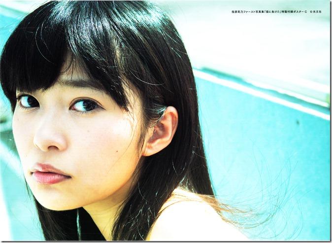 Sashihara Rino First Shashinshuu Neko ni maketa (2)