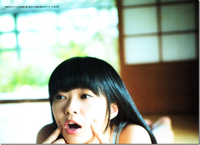 Sashihara Rino First Shashinshuu Neko ni maketa (3)