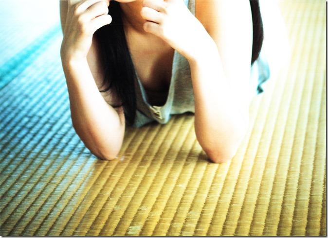 Sashihara Rino First Shashinshuu Neko ni maketa (4)