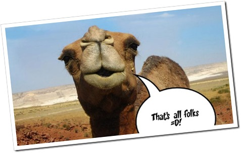 The camel says....