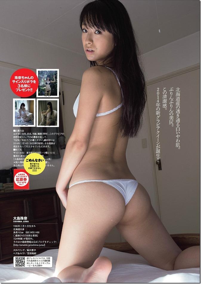 Weekly Playboy no.7 February 17th, 2014 (13)