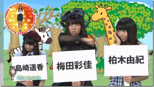 Nakamari Channel (41)
