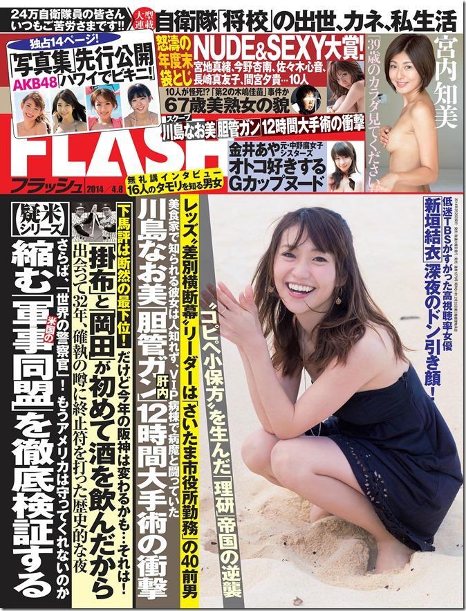 Flash April 8th, 2014 (1)