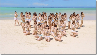 AKB48 in Labrador Retriever (10)