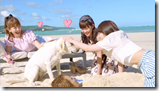AKB48 in Labrador Retriever (24)