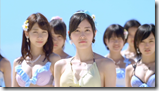 AKB48 in Labrador Retriever (28)