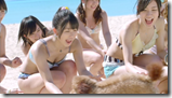 AKB48 in Labrador Retriever (32)