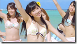 AKB48 in Labrador Retriever (7)