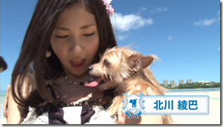 AKB48 in making of Labrador Retriever (12)