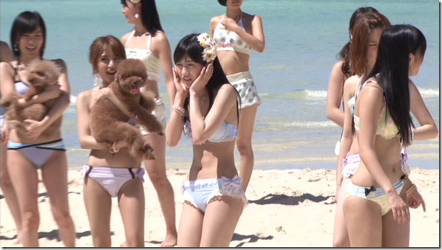 AKB48 in making of Labrador Retriever (20)