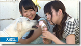 AKB48 in making of Labrador Retriever (28)