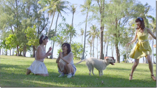 AKB48 in making of Labrador Retriever (36)