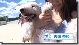 AKB48 in making of Labrador Retriever (7)
