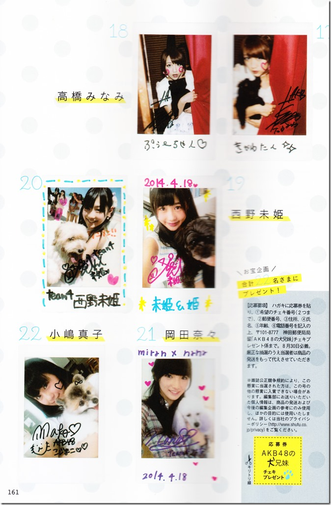 AKB48 no inu kyodai mook (134)