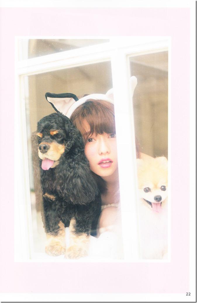 AKB48 no inu kyodai mook (16)