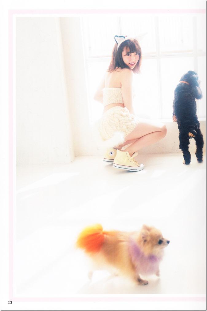 AKB48 no inu kyodai mook (17)