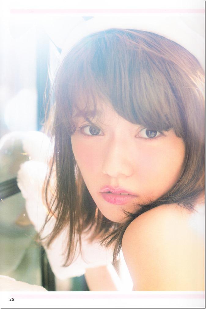 AKB48 no inu kyodai mook (18)