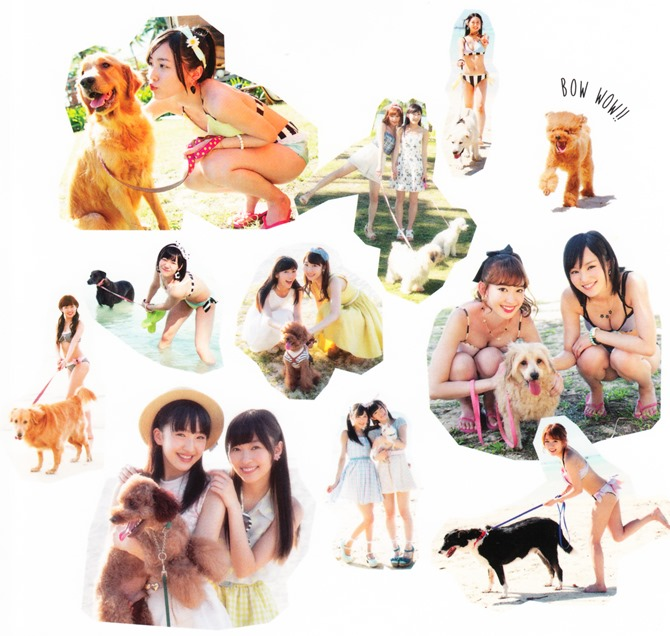 AKB48 no inu kyodai mook (1)