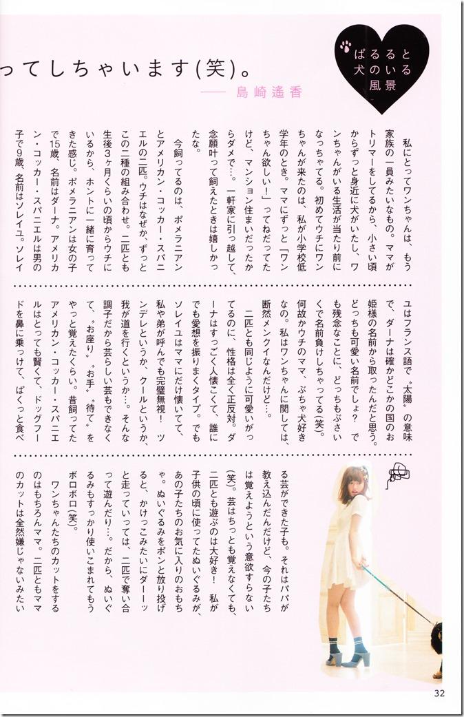 AKB48 no inu kyodai mook (24)