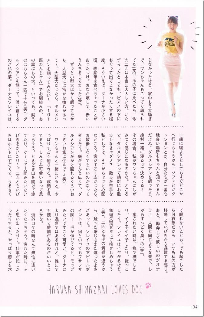 AKB48 no inu kyodai mook (26)