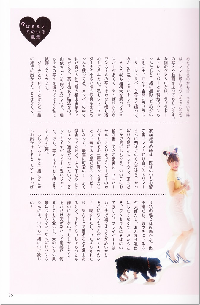 AKB48 no inu kyodai mook (27)