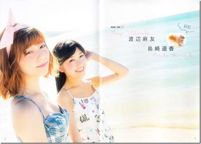 AKB48 no inu kyodai mook (30)