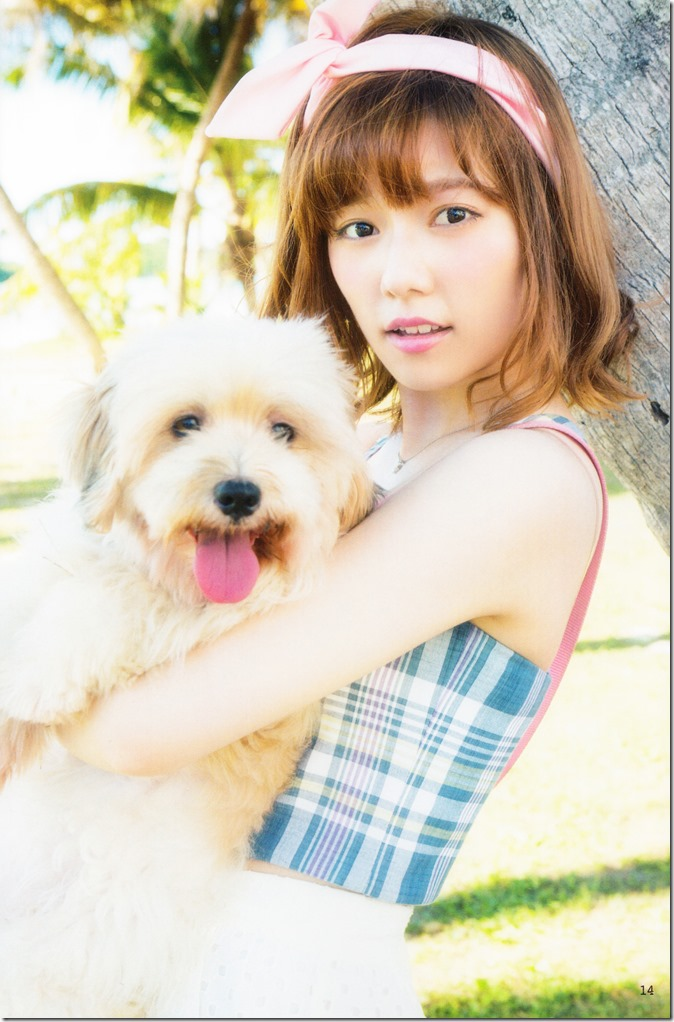 AKB48 no inu kyodai mook (8)