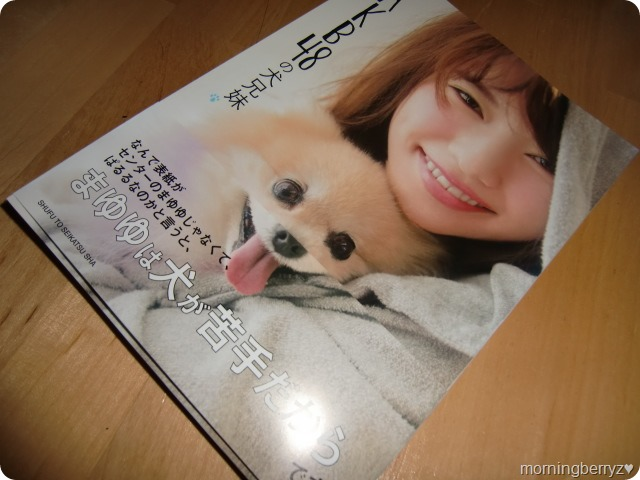 AKB48 no inu kyoudai mook