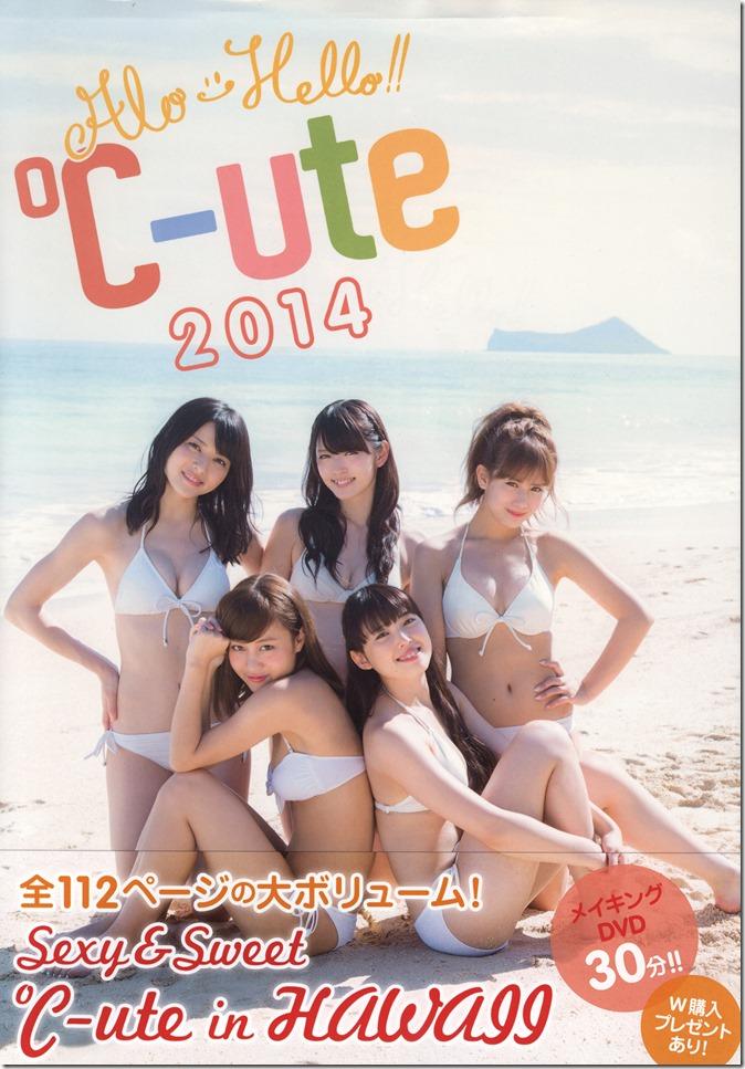 Alo-Hello! ℃-ute 2014 shashinshuu (1)