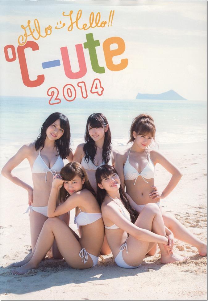 Alo-Hello! ℃-ute 2014 shashinshuu (2)