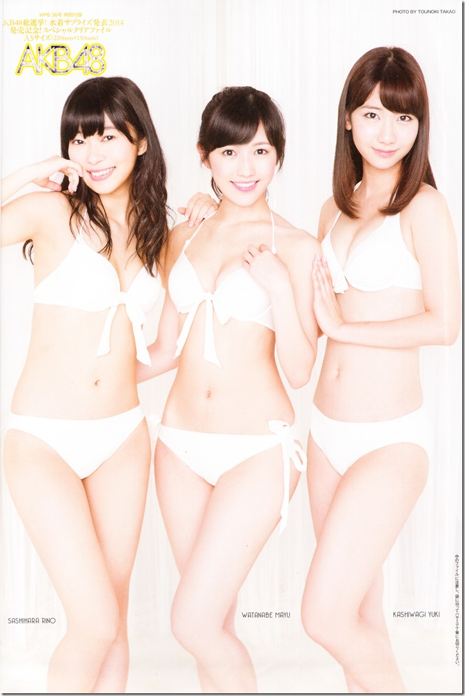 Weekly Playboy no.36 September 8th, 2014 AKB48 A5 sized clear file (2)