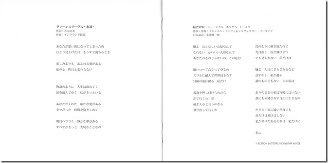 Abe Natsumi Hikari e ~classical & crossover~ (10)
