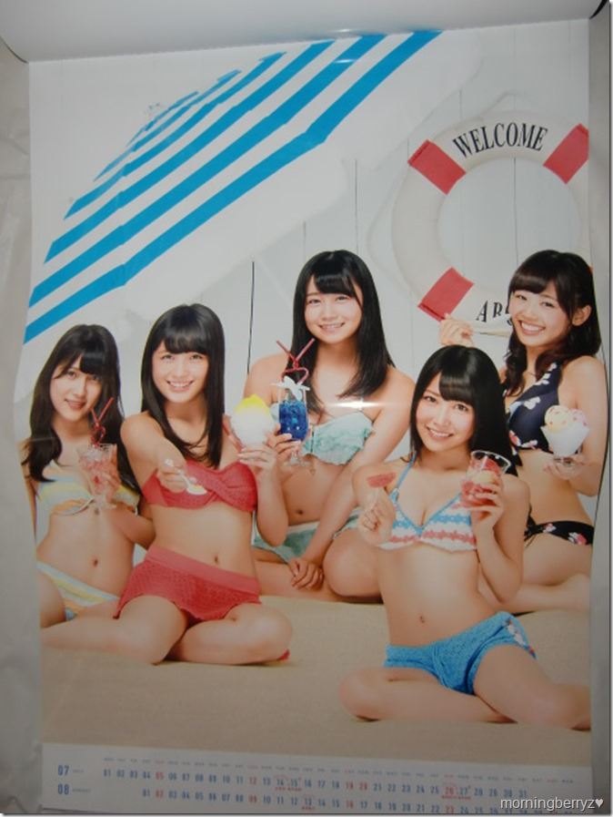 AKB48 2015 Official Group Calendar (8)