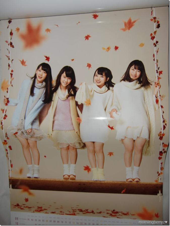 AKB48 2015 Official Group Calendar (9)