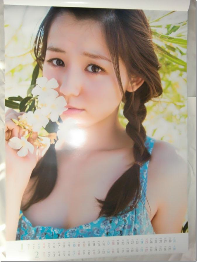 Koike Rina 2015 Wall Calendar (2)