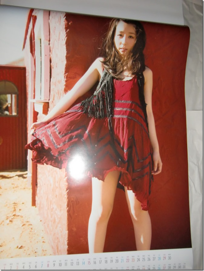 Koike Rina 2015 Wall Calendar (7)