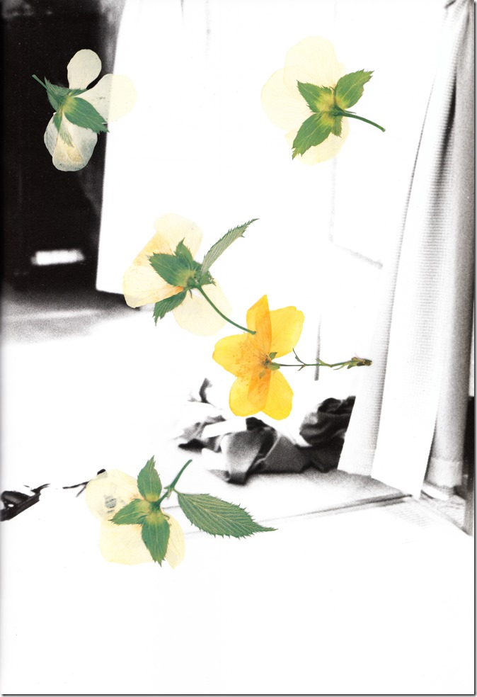 Gekkan Shinchou Mook 078 Ikewaki Chizuru (88)