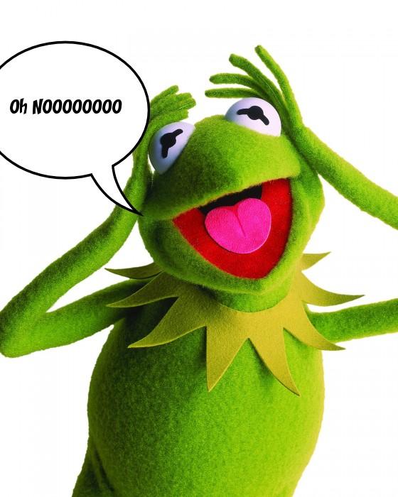 Kermit says....