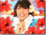 Hawaiian31