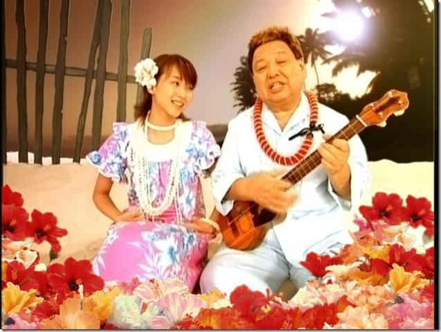 Hawaiian41