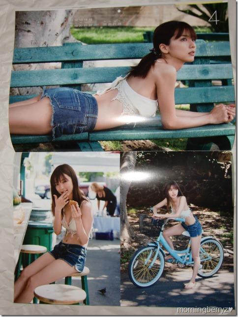 Mano Erina 2016 calendar (5)