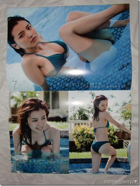 Mano Erina 2016 calendar (8)