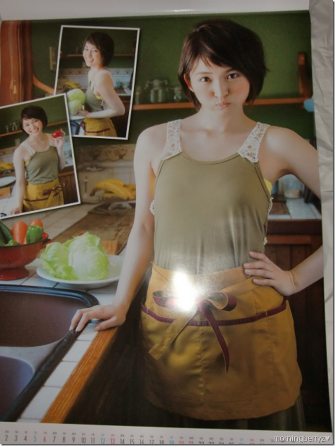 Okamoto Rei 2016 wall calendar (3)